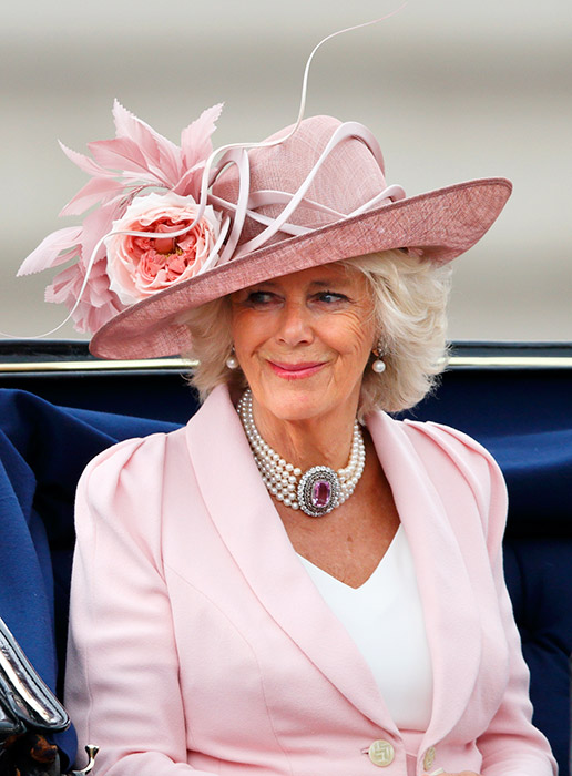 Camilla Embodies All Too Common Stepmother Challenges